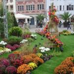 Temporäre Blumenanlage in Mulhouse