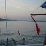 Morgennebel auf dem Rhein