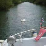 Stimmungsbild Canal de Colmar